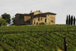 Villa Calcinaia 1
